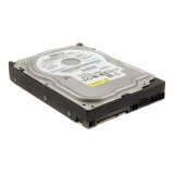 "HDD 80GB SATA 3.5"", INTERN, 7200 RPM, 8MB Cache, Western Digital WD Blue WD800JD"